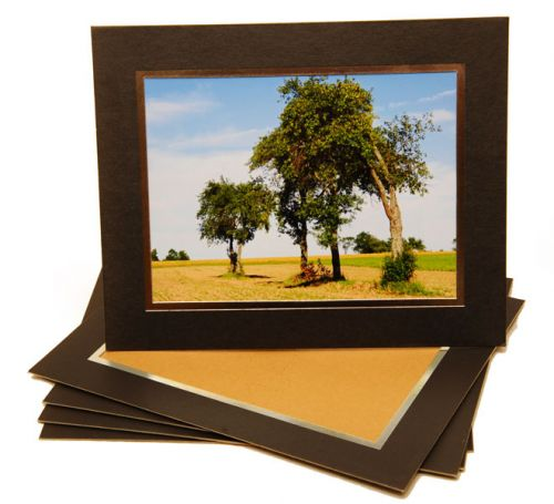 Card Photo Mount 8X6 inch (5pk)